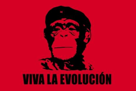 Viva la evolución