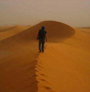 Travesía del desierto