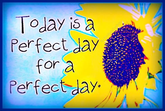 Un día perfecto para tener un día perfecto