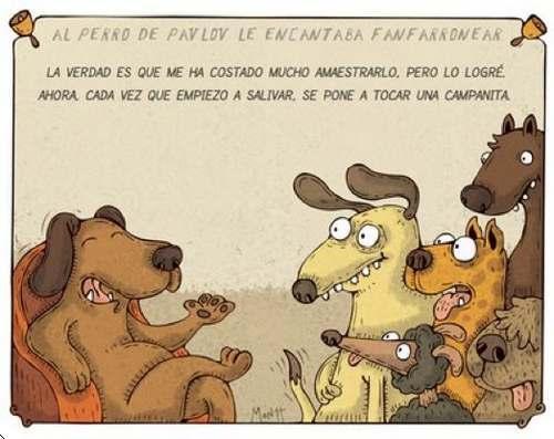 perro-de-pavlov fanfarrón